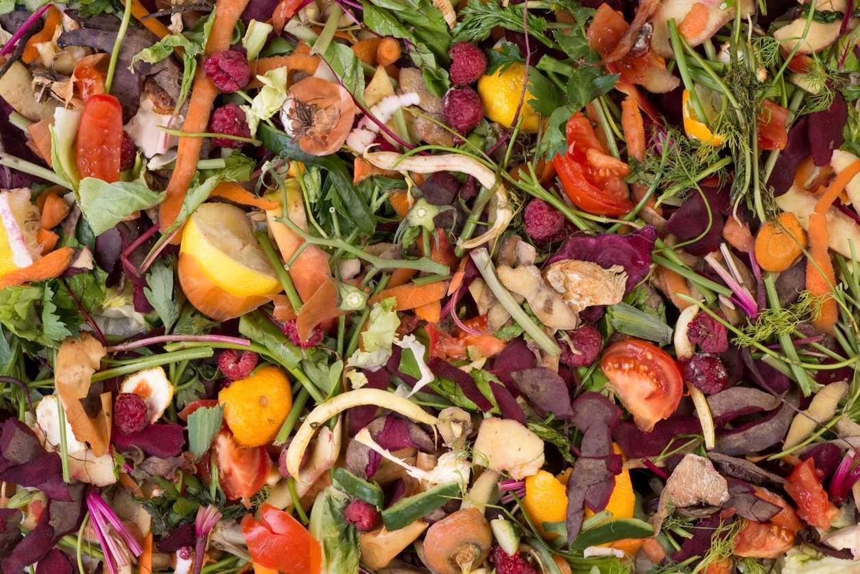 Drawdown Georgia- Food Waste