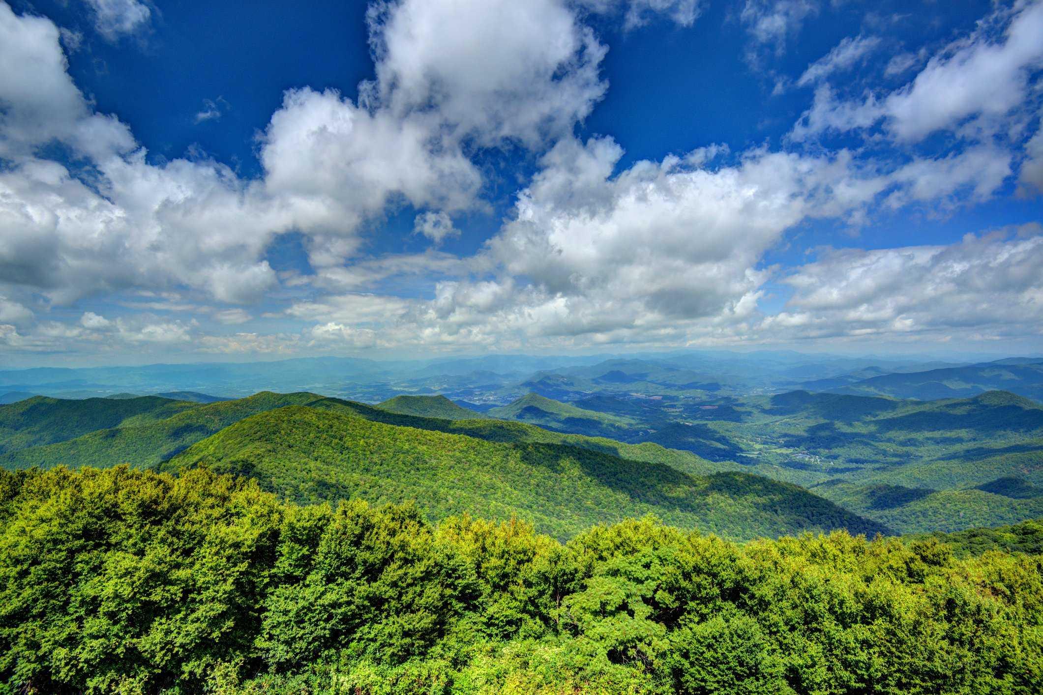 Drawdown Georgia- Georgia Forests