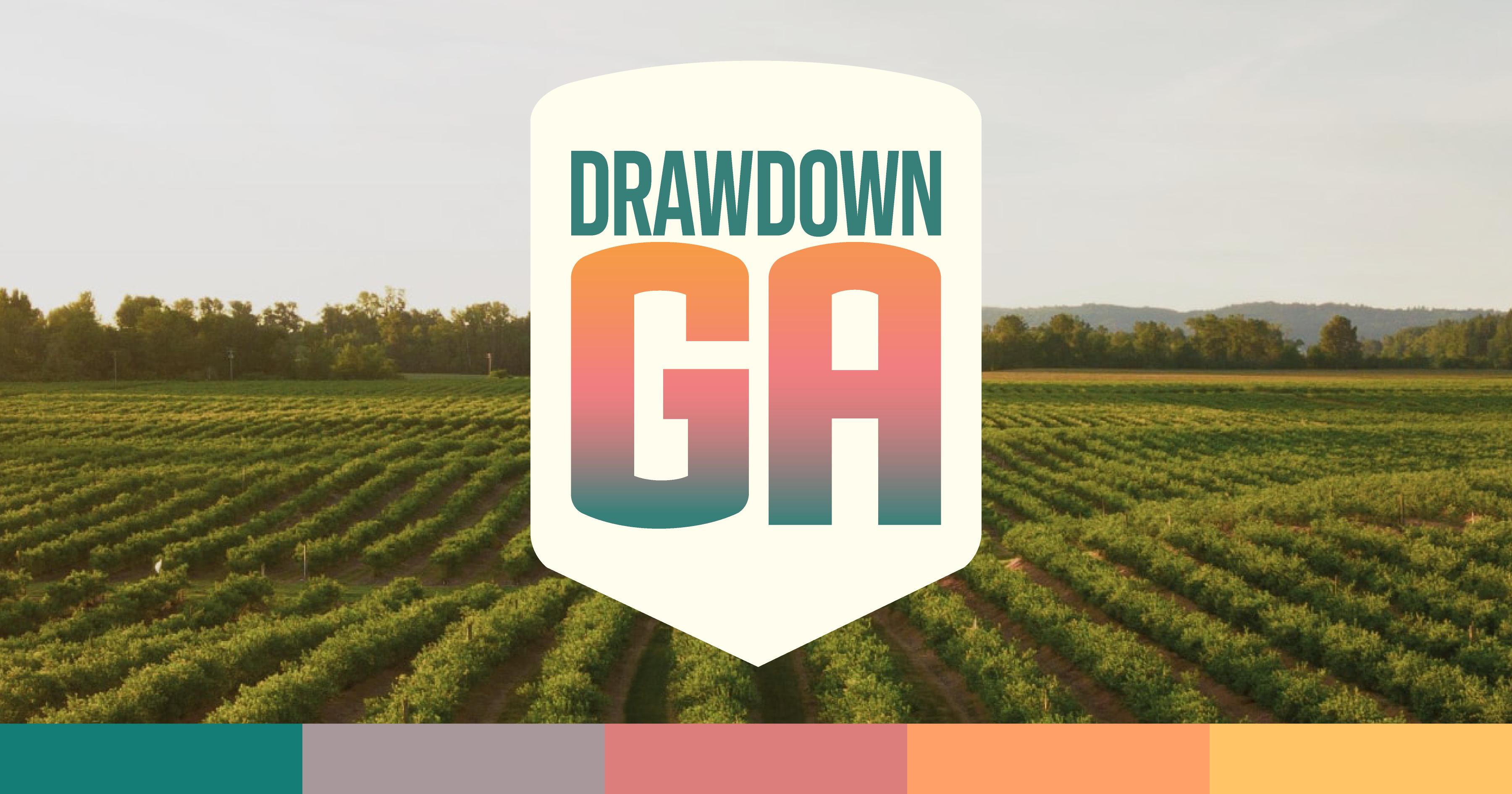 Drawdown Georgia farm image