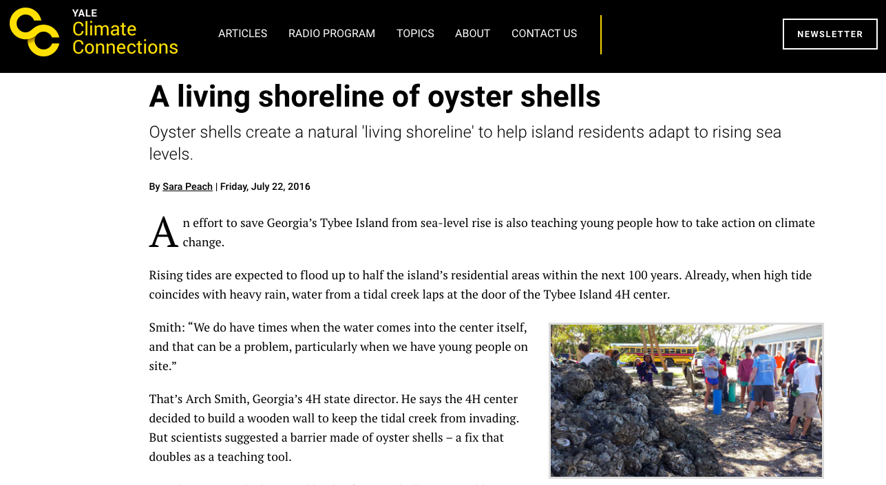 Addressing Rising Sea Levels with a living Shoreline of Oyster shells